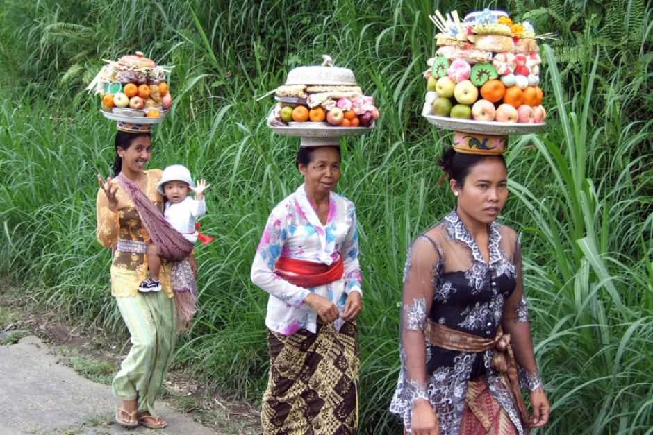 Кто живет на Бали 3