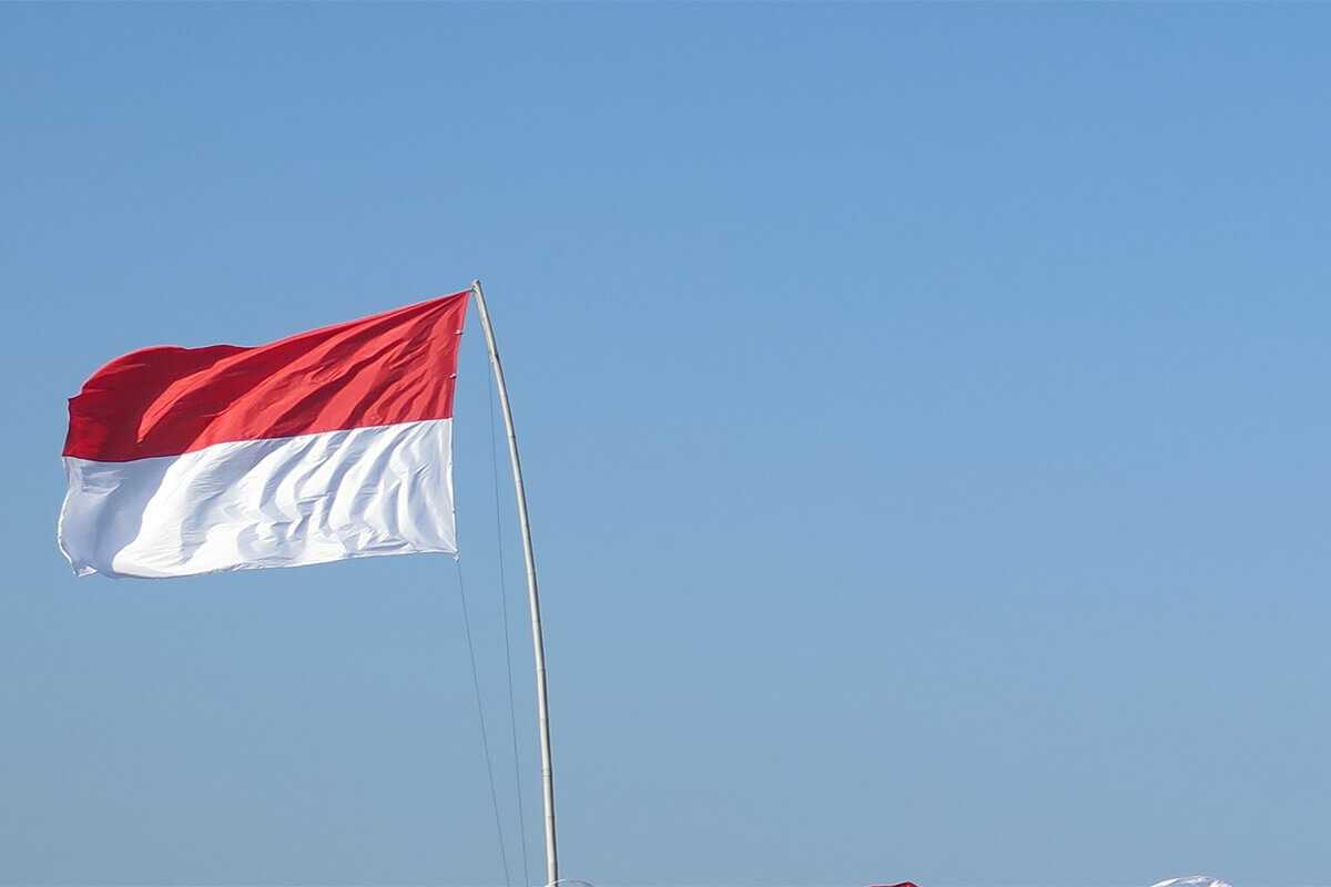 Государственная власть на Бали 1