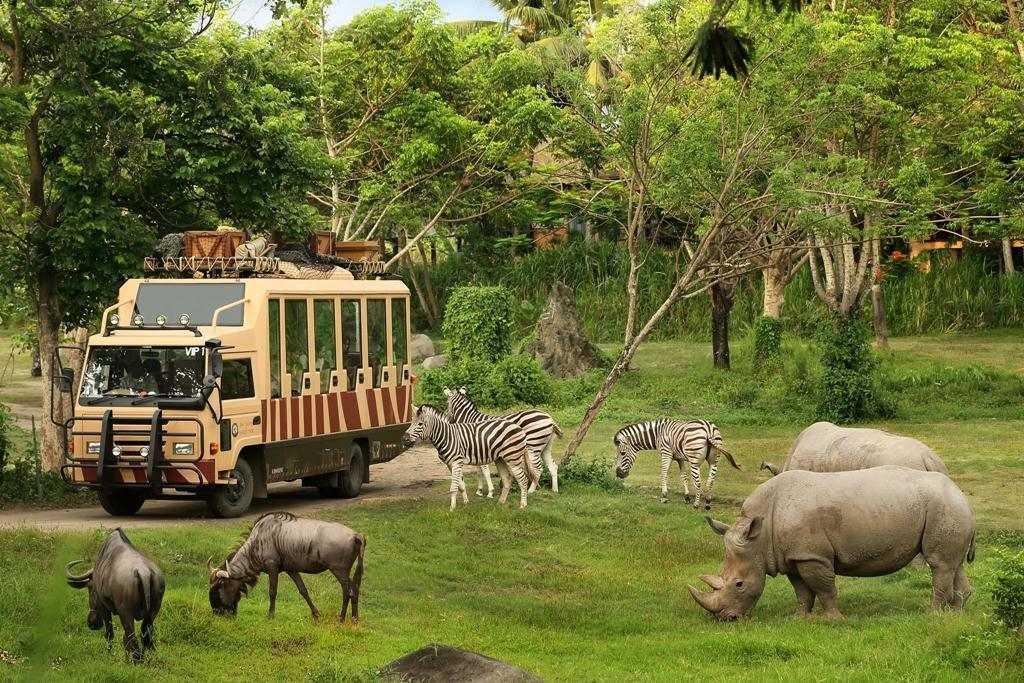 Самые красивые природные парки Бали 7