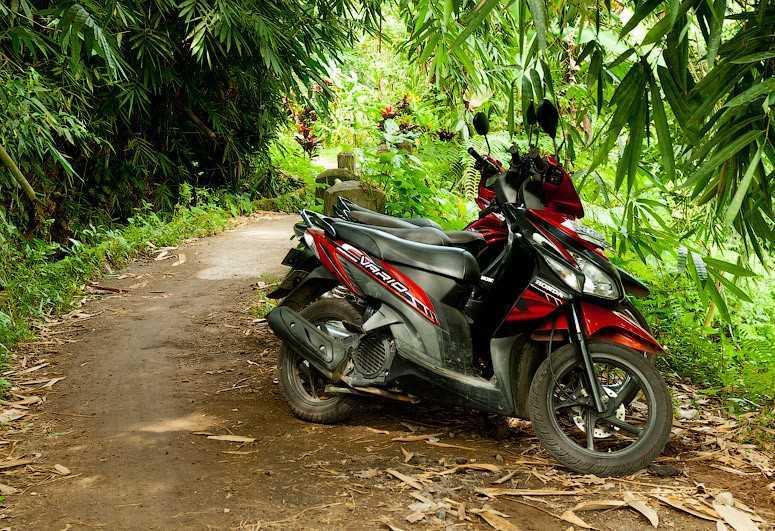 Аренда мотороллера на Бали 11