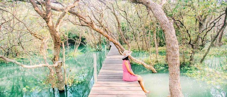84d8f 5 mangrove forest denpasar best instagram spots bali 770x330 - Мангровый лес Нгурах Рай в Денпасаре