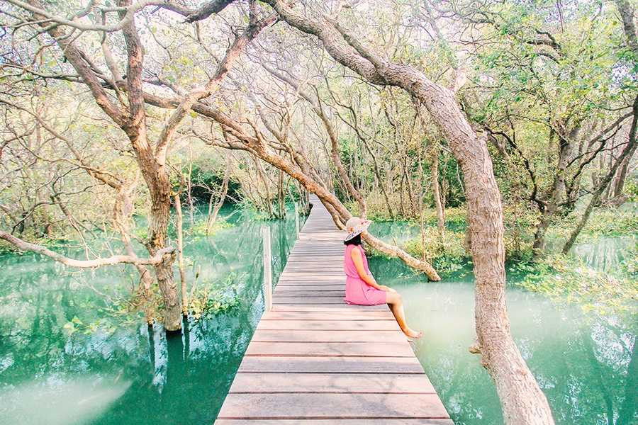 Мангровый лес Нгурах Рай в Денпасаре 10