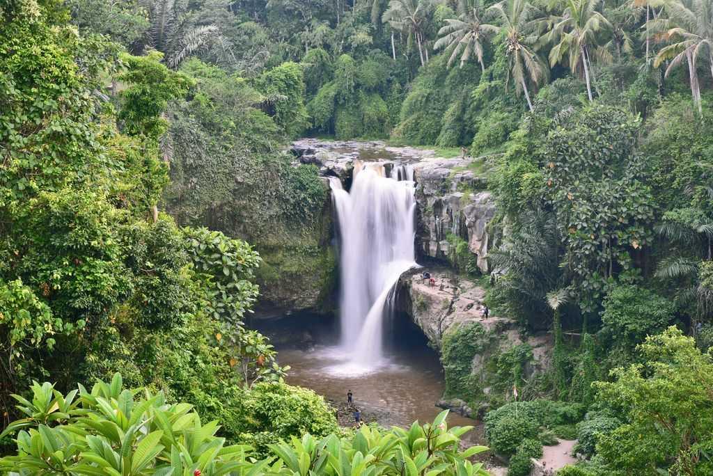 Плюсы и минусы отдыха на Бали