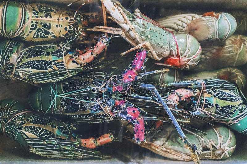 Рыбный рынок Джимбарана