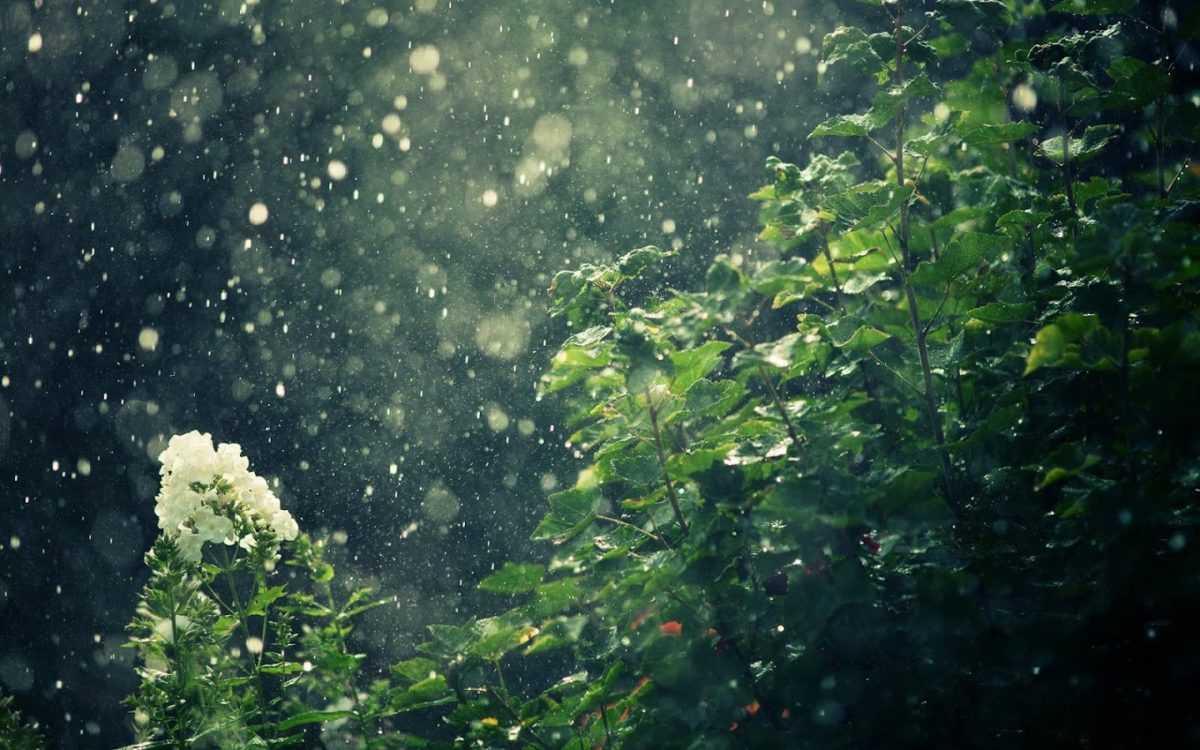 погода в Денпасаре в ноябре