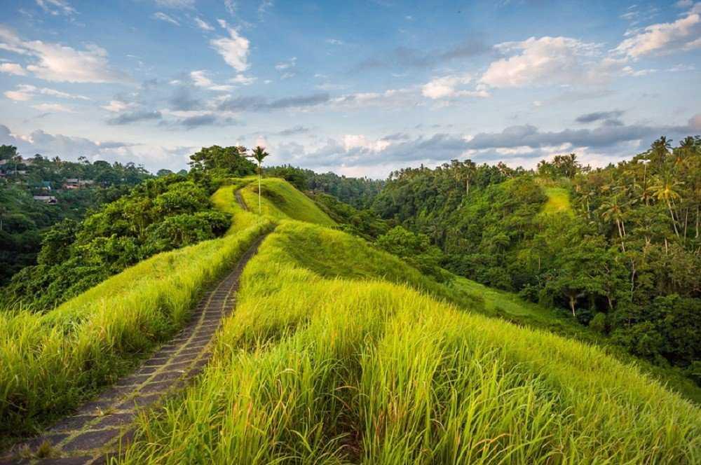 Как добраться до Убуда на Бали 1