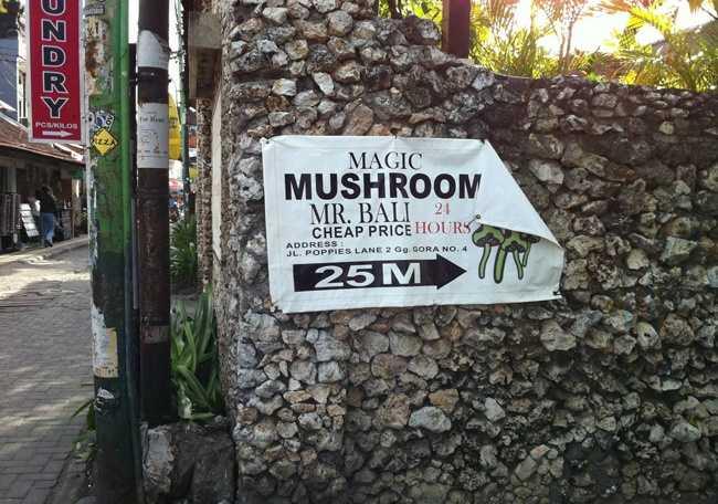 Волшебные грибы на Бали