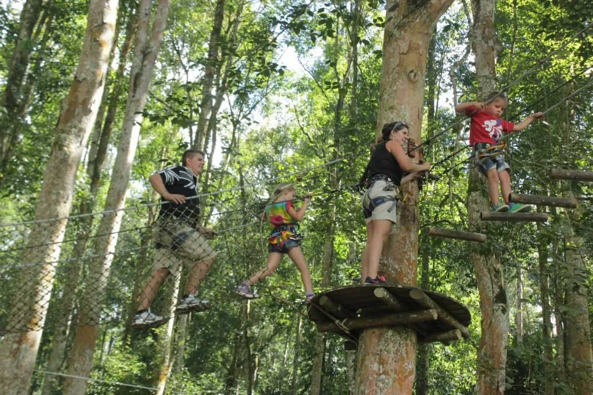 Bali Treetop Adventure Park в Табанане